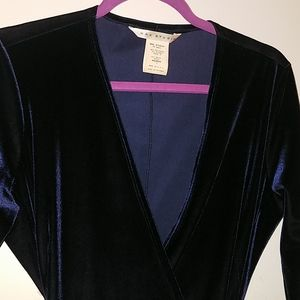 Max Studio Deep Blue Velvet Low Cut V-neck Dress